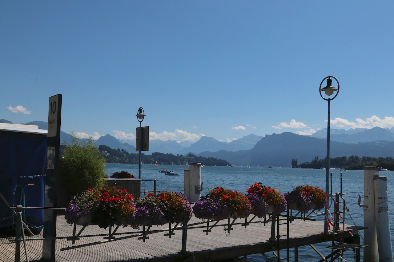 flowers-in-lucerne-copy