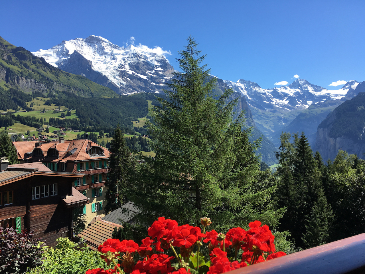 hotel-view-from-alpenruhe-copy