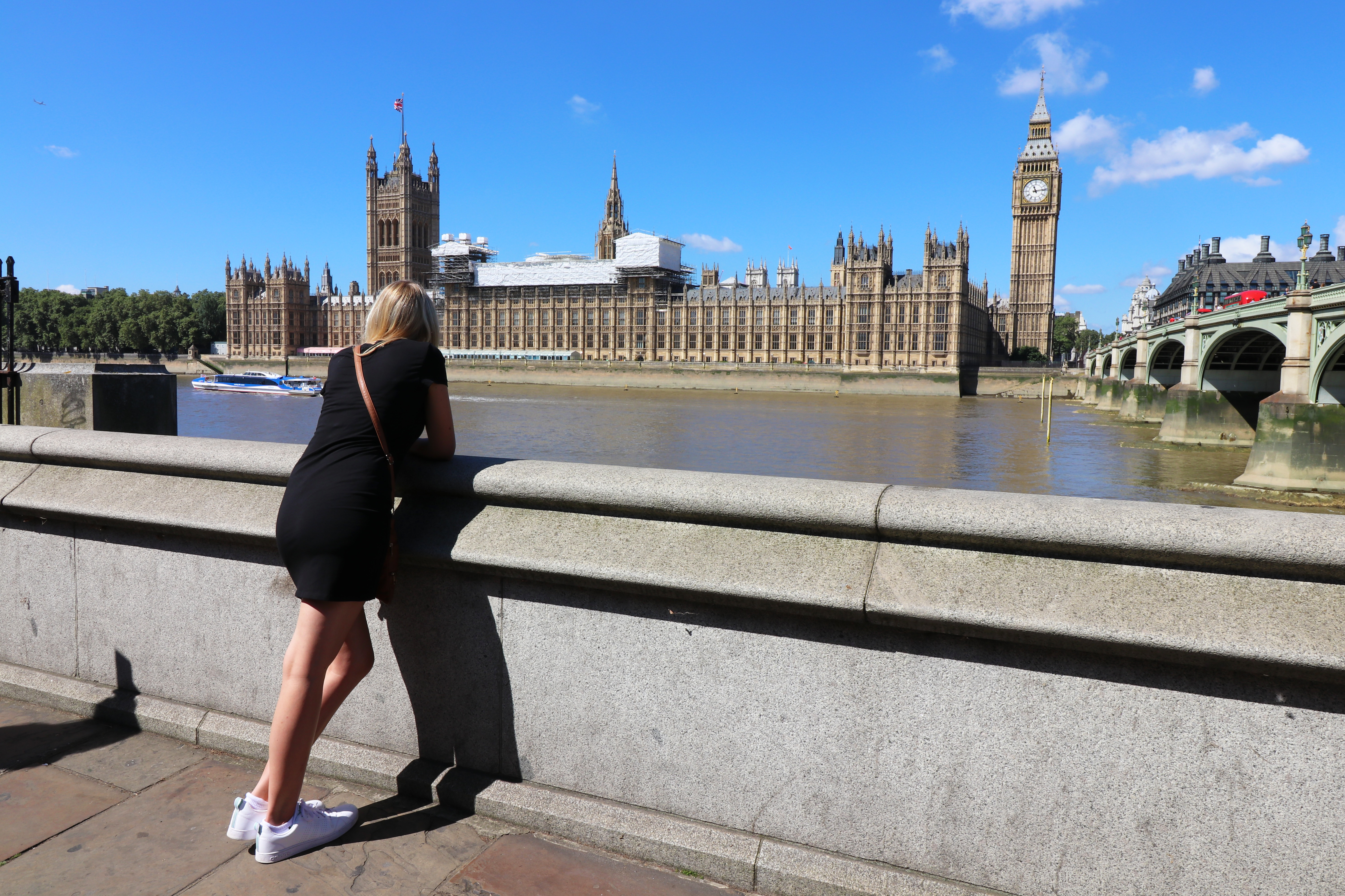 Tandi overlooking Palace of Westminster and Big Ben copy.jpg