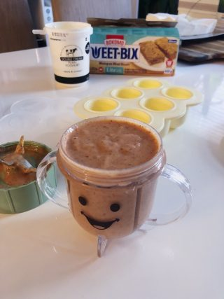 Stage 1 Baby Food Recipes Baby Bullet